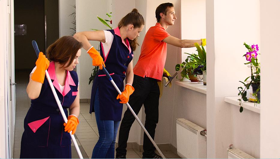 Комплексная уборка офисов от 32 руб/м2. Для расчета стоимости свяжитесь с нами по телефону или напишите на office@greenapplespb.ru.
